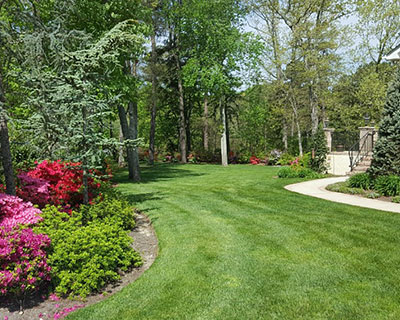 Landscaping Glassboro, NJ